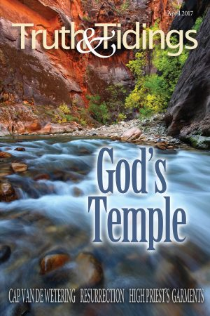 The Assembly, Figuratively Speaking (3): God's Temple